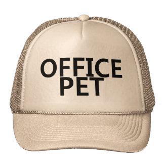 Office Pet Mesh Hats
