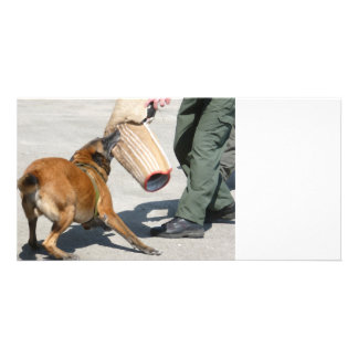 officer k9 training arm bite painting dog canine personalized photo card