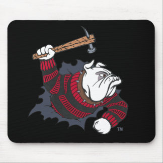 Official HairoftheDawg.rocks Mousepad
