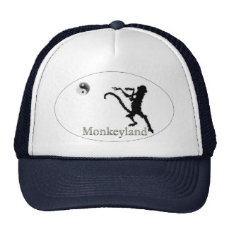 Official Hat of the Church of Martial Arts