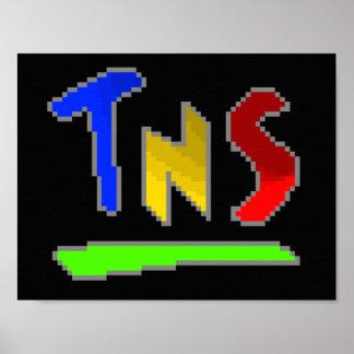 Official Logo TNS Poster