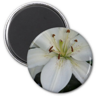 Offset White Lily 6 Cm Round Magnet
