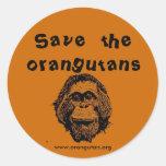 OFI - saving orangutans & rainforest Round Sticker