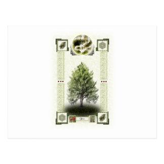Ogham runes - Ioho Postcard