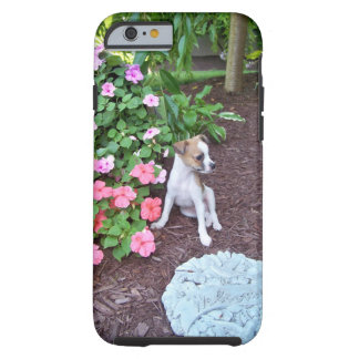 OH CHIHUAHUA! Adorable puppy cell phone case Tough iPhone 6 Case