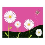 Oh Daisies! Post Card