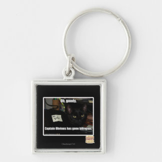 Oh, goody. Silver-Colored square key ring