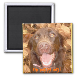 Oh happy day! square magnet