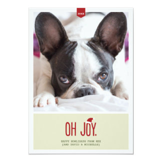 Oh Joy | Funny Holiday Photo Card 13 Cm X 18 Cm Invitation Card