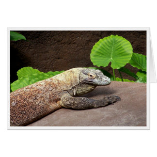 """""""Oh no...it's Komodo!"""" Note Card"""