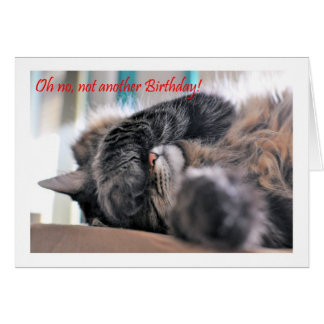 Oh no, not another Birthday! Cat Happy Birthday Greeting Card