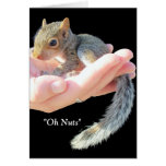 Oh Nuts / Get Well Soon