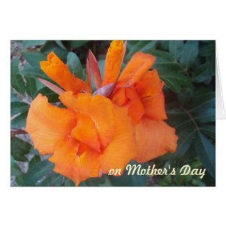 OH, Orange Mother's Day Card