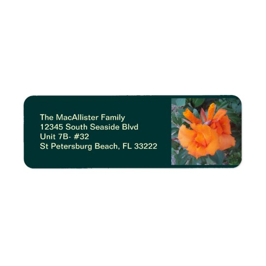 Oh Orange Return Address Label