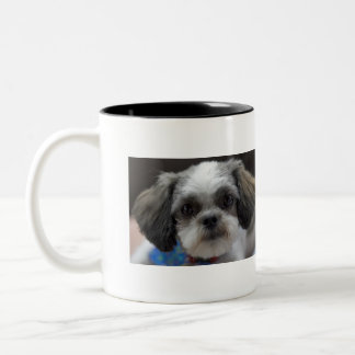 OH SHIH TZU It's Coffee Time Two-Tone Coffee Mug