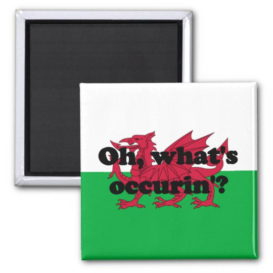 'Oh, what's occurin'?' Square Magnet