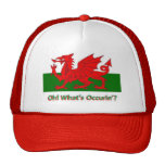 oh whats occurring welsh dragon trucker hat