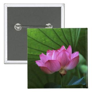 Ohga Lotus, Sankei-en Garden, Yokohama, Japan 15 Cm Square Badge