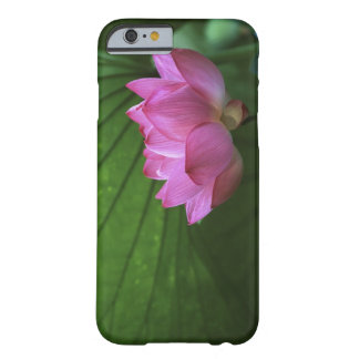 Ohga Lotus, Sankei-en Garden, Yokohama, Japan Barely There iPhone 6 Case
