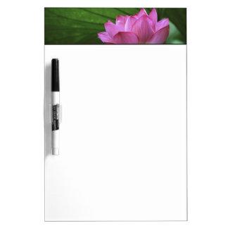 Ohga Lotus, Sankei-en Garden, Yokohama, Japan Dry-Erase Whiteboards