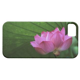 Ohga Lotus, Sankei-en Garden, Yokohama, Japan iPhone 5 Covers
