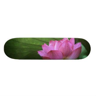 Ohga Lotus, Sankei-en Garden, Yokohama, Japan Skate Decks