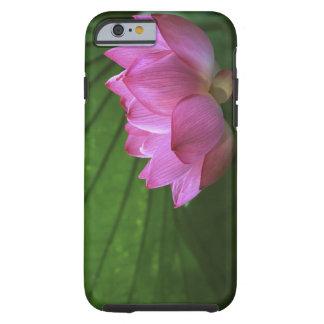 Ohga Lotus, Sankei-en Garden, Yokohama, Japan Tough iPhone 6 Case