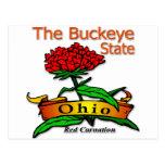 Ohio Buckeye State Red Carnation
