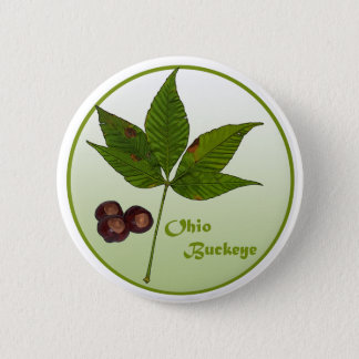 Ohio Buckeye Tree 6 Cm Round Badge
