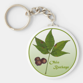 Ohio Buckeye Tree Basic Round Button Key Ring
