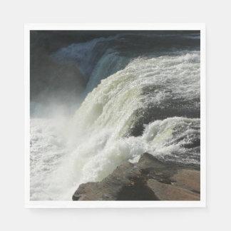 Ohiopyle Falls in Pennsylvania Disposable Serviette