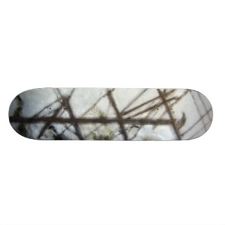"Oil Painting ""Crow"" HDR Toning Skateboard"