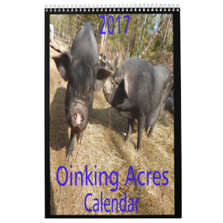 Oinking Acres Mini Pigs Calendars