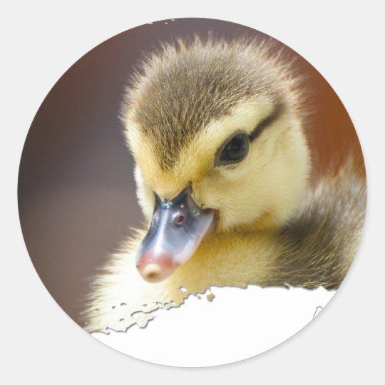 Ojatro Duckling 01 Classic Round Sticker