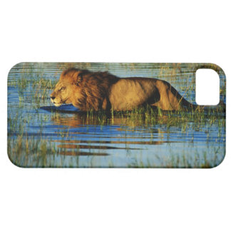 Okavango Delta, Botswana 3 iPhone 5 Cases