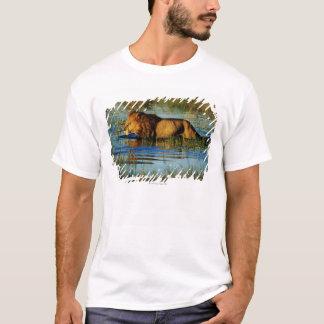 Okavango Delta, Botswana 3 T-Shirt