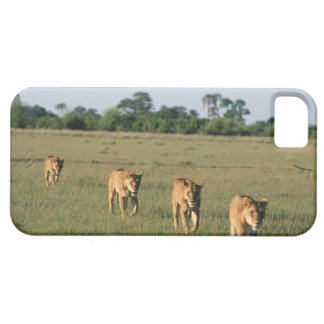 Okavango Delta, Botswana 4 Barely There iPhone 5 Case