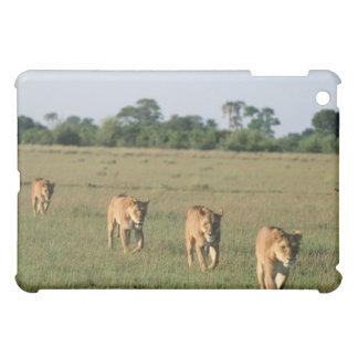 Okavango Delta, Botswana 4 Case For The iPad Mini