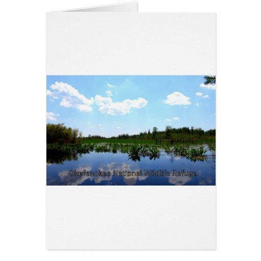 Okefenokee National Wildlife Refuge Greeting Card