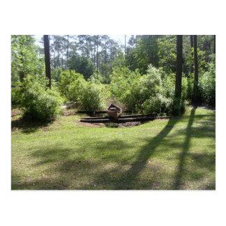 Okefenokee Swamp Park Postcard