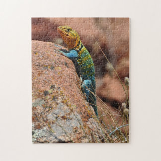 Oklahoma Lizard Jigsaw Puzzles