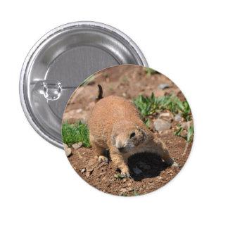 Oklahoma Prairie Dog 3 Cm Round Badge