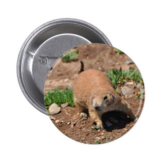 Oklahoma Prairie Dog 6 Cm Round Badge