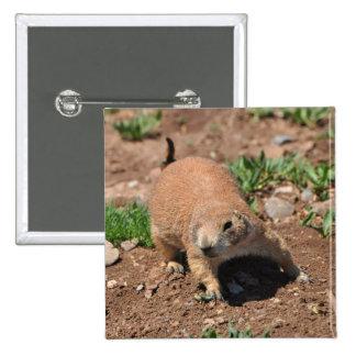 Oklahoma Prairie Dog 15 Cm Square Badge