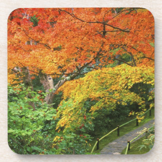 Okochi Sanso, Arashiyama, Kyoto, Japan 2 Coaster