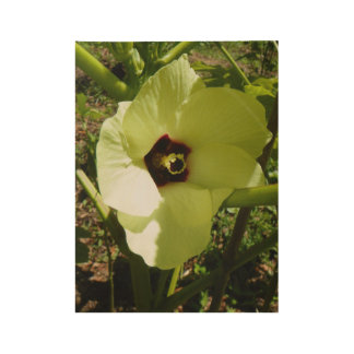 OKRA BLOSSOM WOOD POSTER