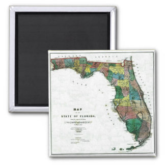 Old 1856 Florida Map Magnets