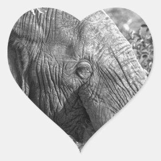 Old African Elephant Heart Sticker