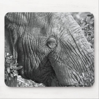 Old African Elephant Mouse Pad