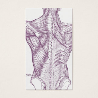 Old anatomy art muscles of the back purple (1890)